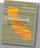 image of cover of Causes Count
