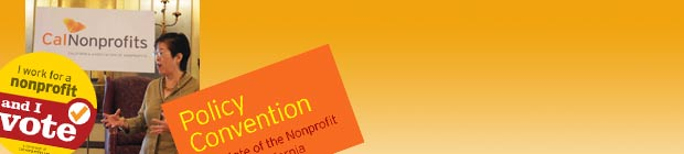 banner graphic for Programs section of CalNonprofits website