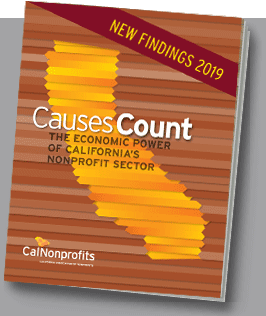 Cover image of Causes Count 2019